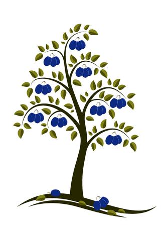 abstrakt Pflaumenbaum auf weißem Hintergrund