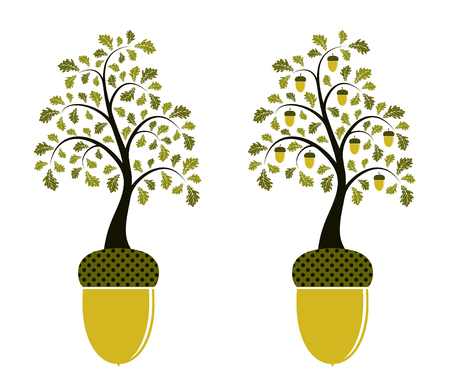 tree decorations: two versions of oak growing from acorn on white background