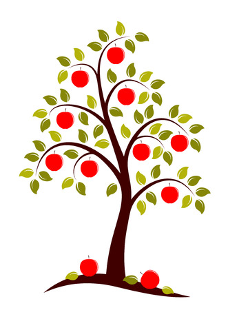 vector apple tree on white background