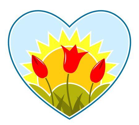 vector tulips and sun in heart Vector