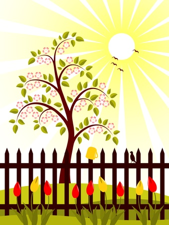 vector flowering tree and picket fence with tulips Stock Vector - 8802016