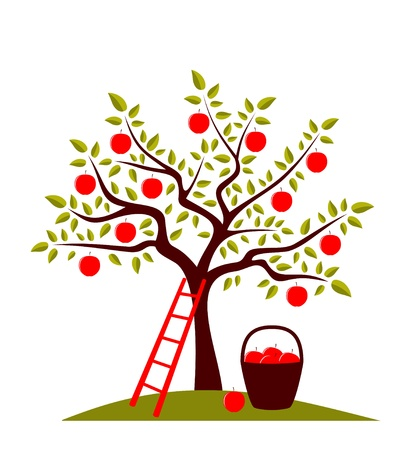 apples basket: vector apple tree, ladder and basket of apples