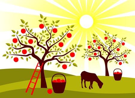 cabras: cabra de pastoreo de vector en el huerto de �rbol de apple Vectores