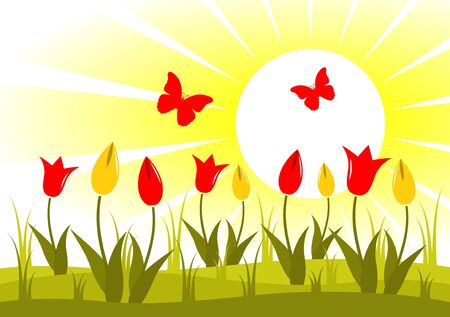 tulips in green grass: vector meadow of tulips and butterflies