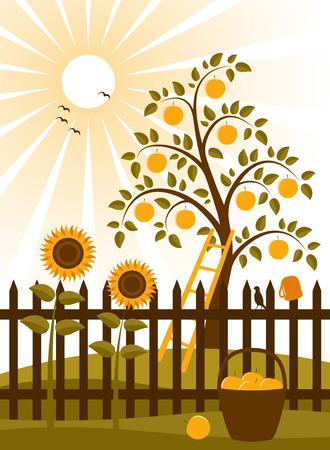 Apple boom en piket hek met zonnebloemen