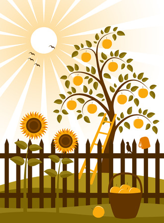 apple tree and picket fence with sunflowers Ilustração