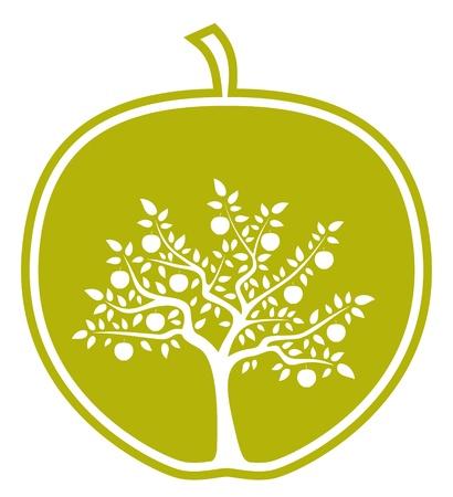 albero di mele: albero di mele in apple su sfondo bianco