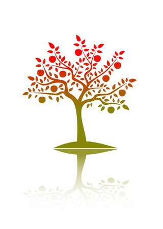 vector apple tree with reflection Stock Vector - 9059651