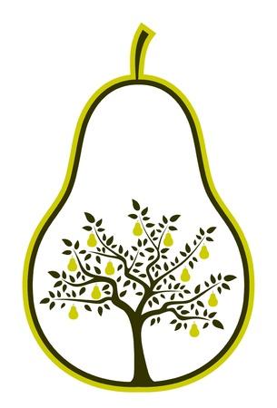 梨: pear 白い背景の上でベクトル梨の木