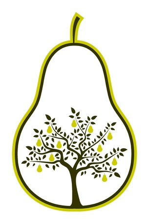 vector pear tree in pear on white background