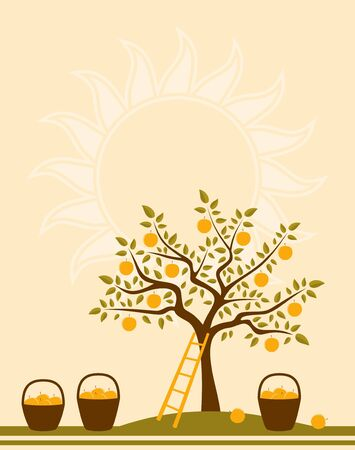 background with apple tree, ladder and baskets of apples