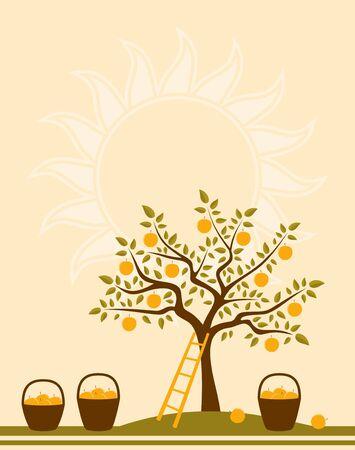 canasta de frutas: Fondo con Manzano, escalera y cestas de manzanas Vectores
