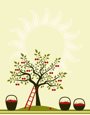 background with cherry tree, ladder and baskets of cherries Vector