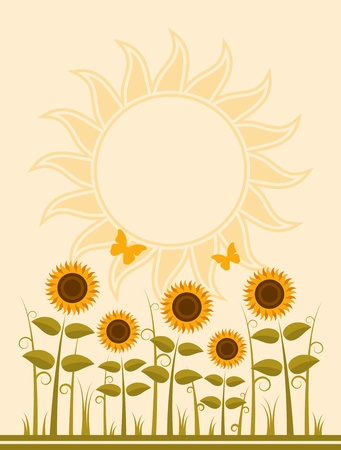country flowers: sunflowers background Illustration