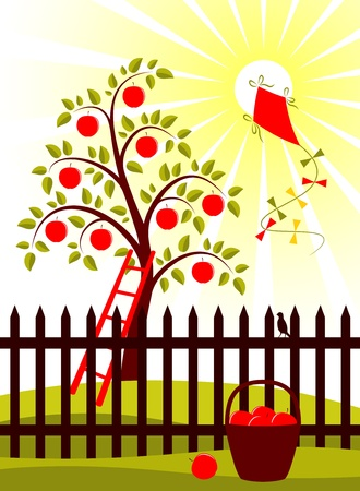 apple harvest Vector