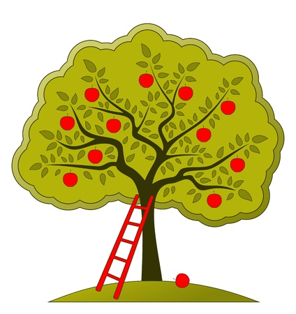 treetop: apple tree and ladder on white background
