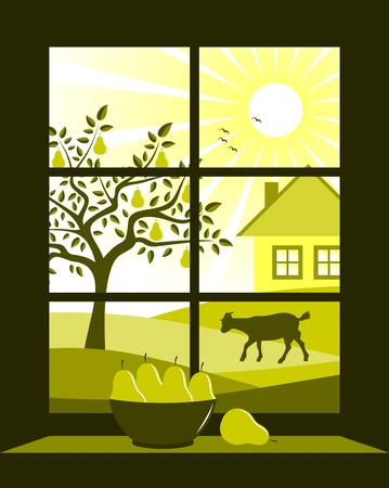 window view: pear tree and cottage outside the window