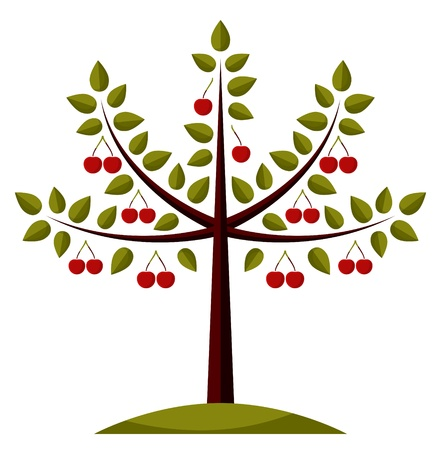 cherry tree on white background Ilustracja