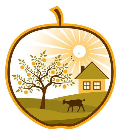 orchard: rural scene in apple on white background