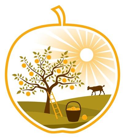 vector rural landscape in apple on white background