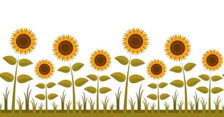 seamless sunflowers border