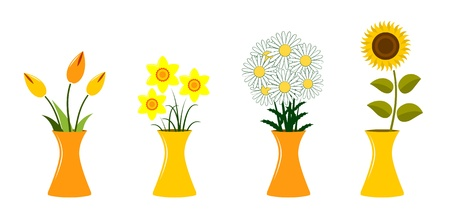 vector collection of flowers in vase on white background Vector