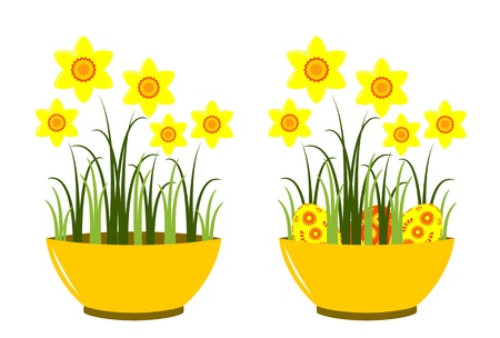 tuft: vector daffodils in bowl on white background