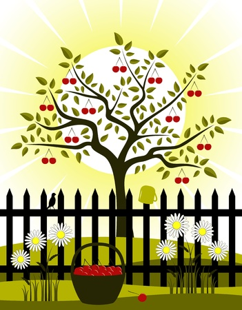 cherry tree and picket fence with daisies Vector