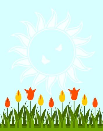 tulips in grass Stock Vector - 12036168