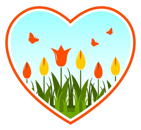 tulips in heart on white background Stock Vector - 12036169