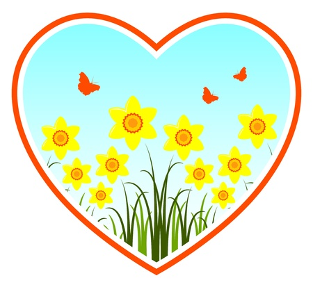 vector daffodils in heart on white background Stock Vector - 12285050