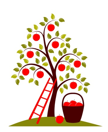 vector apple tree, ladder and basket of apples Stock Vector - 12285051