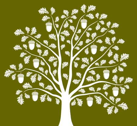 oak tree on green background Stock Vector - 12492390