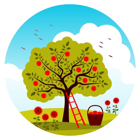 apple tree, ladder and basket of apples Stock Vector - 12492377