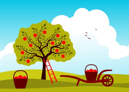 vector apple tree and hand barrow with basket of apples Stock Vector - 12773246