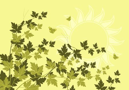 vector green branches with grasshoppers and butterflies Stock Vector - 12943047