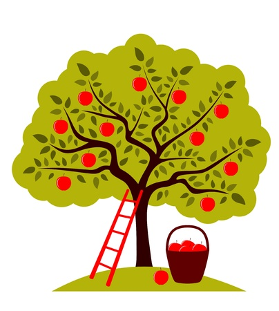 vector apple tree, ladder and basket of apples