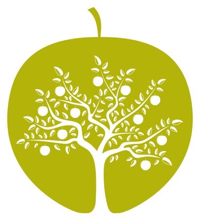 arbol de manzanas: vector árbol de manzana en manzana sobre fondo blanco