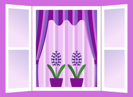 window curtains: vector open window with hyacinths