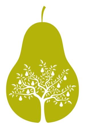 perenboom in peer op witte achtergrond
