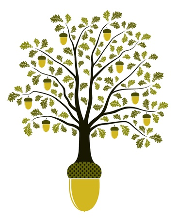 tree decorations: oak tree growing from acorn on white background Illustration