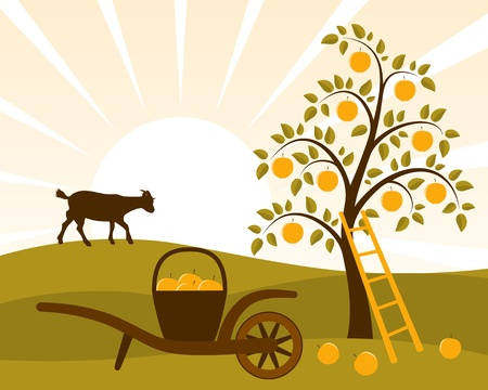 apple tree and hand barrow with basket of apples Ilustração