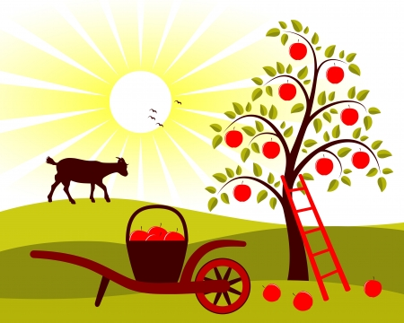 vector apple tree and hand barrow with basket of apples Vector