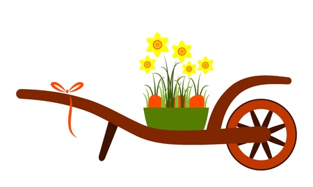 hand barrow and daffodils with easter eggs isolated on white background Vector