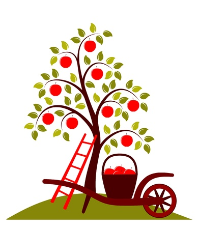 apple tree and hand barrow with basket of apples isolated on white background Vector