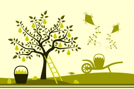 vector pear tree, hand barrow with basket of pears and kites