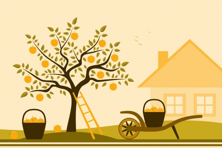 apple tree, hand barrow with basket of apples and cottage Vector