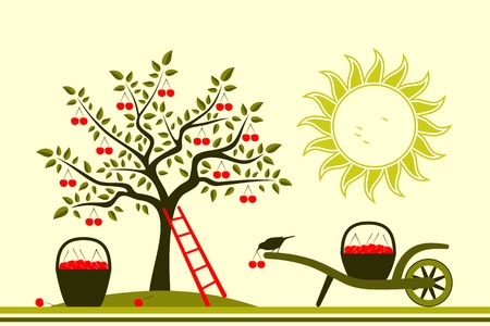 cherry tree and hand barrow with basket of cherries Stock Vector - 15654342