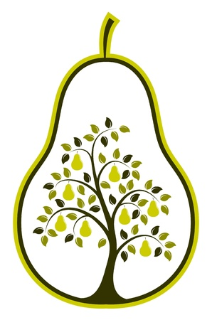 vector pear tree in pear isolated on white background Vector