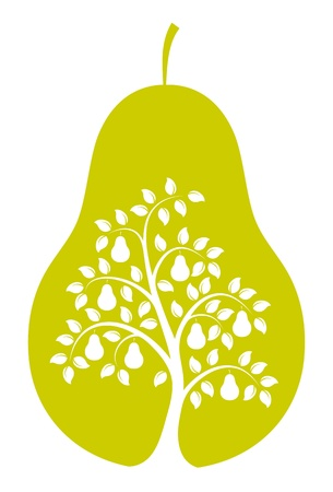 vector pear tree in pear isolated on white background Stock Vector - 17296633